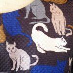 h&m_cat